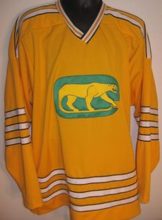 21319c705 Chicago Cougars vintage hockey jersey 1973-74 WHA World Hockey Association  made of game weight