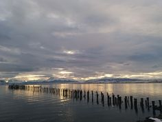 Puerto Natales, Magallanes. Chile Patagonia, Chile, Beach, Outdoor, Christmas, Past Tense, Outdoors, Chili Powder, Seaside