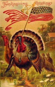Thanksgiving Greetings!  Love the turkey waving the American flag!  :)