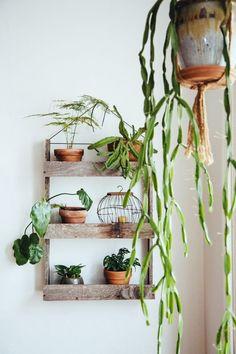De botanische interieur stijl draait voornamelijk om planten en de kleur groen. In een botanisch interieur zie je ontzettend veel planten die met elkaar gecombineerd worden op de meest gekke...