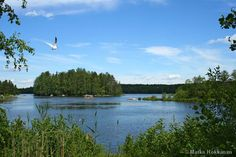 Summer in Finland... my next vacation!