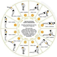 (Surya namaskar or the infamous sun salutation) Surya' in Hindi means sun and 'namaskar' means salutation. Surya namaskar or sun salutation is an excellent way to begin your Yoga Inspiration, Fitness Inspiration, Fitness Workouts, Yoga Fitness, Health Fitness, Fitness Weightloss, Workout Gear, Boxing Workout, Yin Yoga