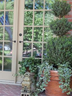 The French Tangerine: ~ pots and patio 2013