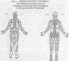 The Bodymap - A precise diagnostic tool for Psychotherapy Body Therapy, Abstract, Summary