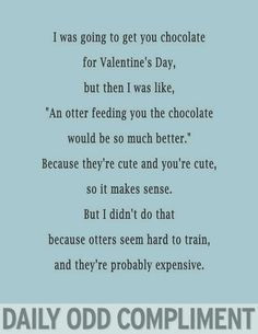 Daily Odd Compliment - Otters and chocolate Funny Compliments, Just For Laughs, Just For You, Daily Odd, Funny Quotes, Funny Memes, Hilarious, Youre Cute, I Love To Laugh