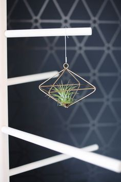 inspiration and diy | air plants in wire gem ornaments/wired gem ornaments