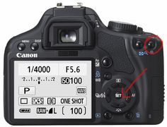 "Great info on taking ""in focus"" pics with your DSLR."