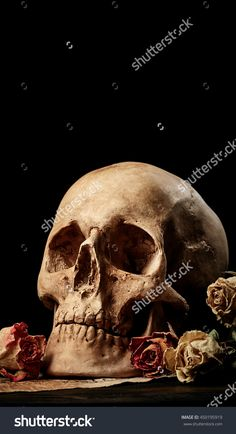 Skull, dry roses and music notes. Vintage background