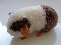 Cute pom pom guinea pig