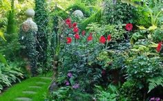 Small Garden Ideas Beautiful and Magical -