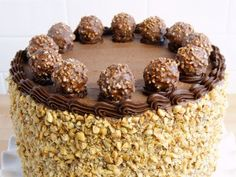 You searched for Chocolate Nutella Cheesecake Cake recipe - Wicked Good Kitchen Chocolate Nutella, Best Chocolate Cake, Chocolate Hazelnut, Chocolate Desserts, Nutella Cheesecake, Cheesecake Cake, Cheesecake Recipes, Dessert Recipes, Nutella Cake