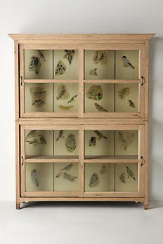 Anthropologie: painted birds cabinet