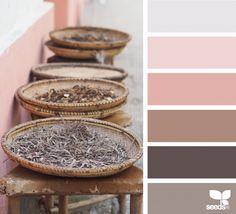 Color Wander | Design Seeds