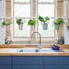 Find new and creative ways to bring plants into your home this winter with Houzz!