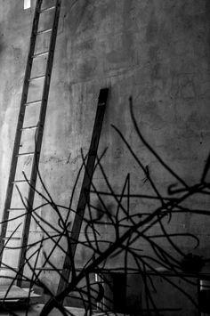 """©Sin titulo, de la serie: """"La arrocera"""" 27 de Julio de 2013 Campeche, Camp; México."""