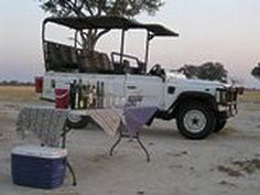 Latest Sightings from Davison's Camp in the Hwange National Park in Aug 2012