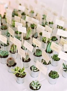 succulent wedding favors double up as escort cards #WeddingFavorIdeas