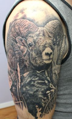 Big horn sheep ram tattoo coverup black and grey rocky mountain full curl