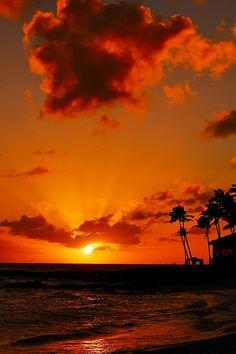 crimson taralehua #orange #sunset