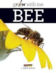 Grow with me Bee is perfect for first and second graders exploring this life-giving insect. The large font and pictures make it accessible as a read aloud as well as something kids can pop in their book boxes.
