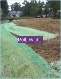Roll, Water & Grow!💪 The best way to plant a lawn in 2020 😍 | Backyard Putting Green Ideas | Backyard Putting Green Ideas | Diy Putting Green Backyard How To Build | Backyard Putting Green. Having your own putting green in your backyard makes it easy to practice putting in your spare time #crazygolftravel #patio #golfcourses #Zahrada Backyard Putting Green, Green Ideas, Play Golf, Lawn, Improve Yourself, Golf Courses, Rolls, Good Things, Patio