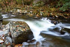 Beautiful Smoky Mountain stream