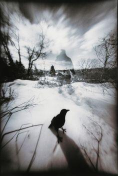 Chalfant by John Fobes