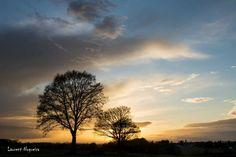 Paysage du Perche de NOGUEIRA est la Photo du Jour!  fotoloco.fr: Cours Photo gratuits et Concours Photos.  Une communaute de 22,000 passionnes! #SAINTPELLERIN #nature #paysage #paysages #instapaysage #beaupaysage #NatureetPaysage #Canon24105 #Canon24105mm #Canon70D #Canon #fotoloco #fotoloco_fr #concoursphoto #coursphoto #photographe #photodujour #francais #inspirationdujour #photographie http://fotoloco.fr/photo-detail/?id=83797