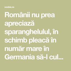 Românii nu prea apreciază sparanghelulul, în schimb pleacă în număr mare în Germania să-l culeagă pentru nemți, care știu să se bucure de beneficiile acestei Germania, Cancer