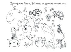 Aquatic animals drawing coloring pages under the sea coloring pages for toddlers ocean animals preschool animal Ocean Coloring Pages, Alphabet Coloring Pages, Coloring Pages To Print, Animal Coloring Pages, Free Printable Coloring Pages, Free Coloring Pages, Coloring Sheets, Coloring Books, Under The Sea Drawings