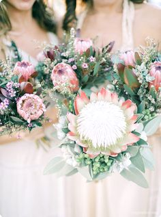 Stunning King Protea Bouquet & Australian native florals in this boho beach wedding. Pic NGG Studios and pink ice proteas gum mallie nuts geraltine wax red luecs Wedding Bridesmaid Bouquets, Protea Wedding, Floral Wedding, Wedding Flowers, Trendy Wedding, Wax Flowers, Giant Flowers, Bridal Bouquets, Wedding Colors