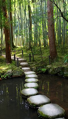 Path by Aaron Webb: Stones laid across a shallow pond in the formal garden at the Nanzen-ji temple in Kyoto, Japan. #Kyoto