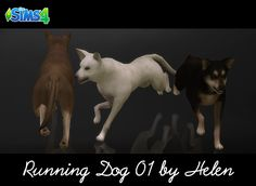 Helen-sims: TS4 Dogs (4 items)