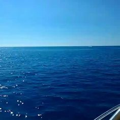 #gita In #barca con gli amici @paolamicciulli un #fuoriprogramma #meraviglioso #mareazzurro #marecalmo #cetraro #cosenza #calabria #calabriadaamare #calabrifornia #italia #ig_italia #volgocosenza #volgoitalia #turistando #travelblogger #travel #viaggiare #picoftheday #love #like #like4like #follow #followme