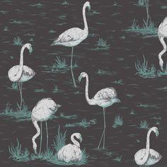 Cole & Son - Contemporary Restyled - Flamingos at www.vertigohome.us