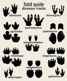 Dinosaur Nursery Art, Field Guide to Dinosuar Tracks   Art for Nursery : Alley Kids