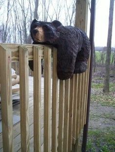 Bears-would love to have one of these for my front deck. Very cute!