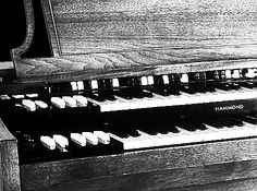 """""""The Hammond Organ Is the Best"""" says this article in """"More Intelligent Human Life.com."""" I like to think that they are speaking of my powerful intellectual organ."""