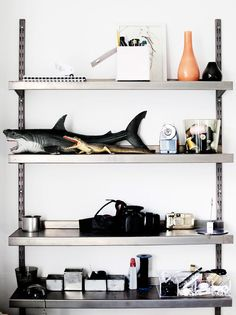 industrial styling + i spy sharks!