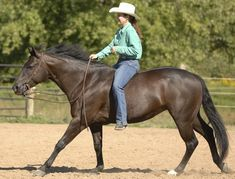 Feel super-secure on your horse. Develop balance that doesn't depend on stirrups or leg grip, with horsemanship tips from bareback diva Stacy Westfall.