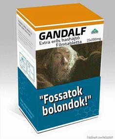 Funny Memes, Jokes, Gandalf, Big Bang Theory, The Hobbit, Bigbang, I Laughed, Lol, Entertaining