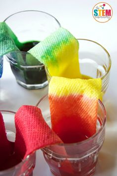 Cool science experiment for kids! Make a walking water rainbow.