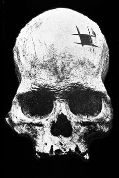 Head Case: The Debate That Divided Archaeology - Neatorama