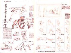The Wolf Children Ame & Yuki Art Book