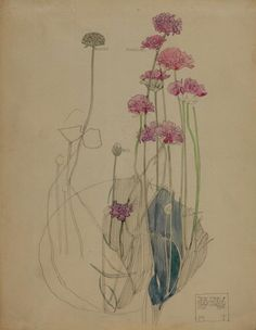 Sea Pink, Holy Island. Charles Rennie Mackintosh. 1901. https://www.facebook.com/78derngate/photos/a.377907058917041.81185.272894872751594/1143672305673842/?type=3