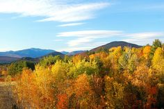 north conway - great ski area and home of many discount stores