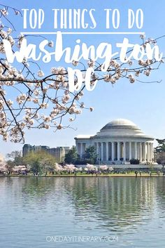 Washington D.C. - Top things to do and Best Sight to Visit on a Short Stay