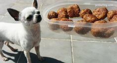 Comida casera para perros Receta albóndigas de carne y avena, son sanas y muy ricas.》FOTOS Y VIDEO《 Cocina un día y ten comida fresca cuando la necesites!