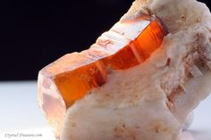 Mica variety: Phlogopite crystal in Calcite matrix / Mogok Stone Tract, Burma (Myanmar)