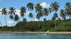 Barefoot Travelers Kayak Tour to Monkey Island Add to trip   Punta Santiago, Humacao, Puerto Rico